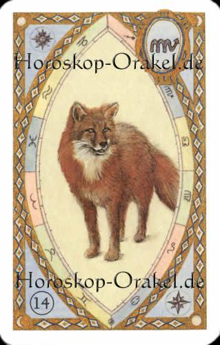 Der Fuchs, Steinbock Tageshoroskop Liebe für heute