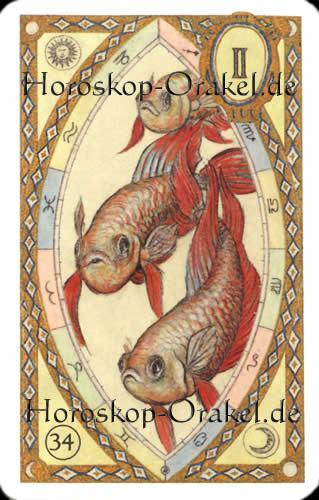 Die Fische, Steinbock Monatshoroskop